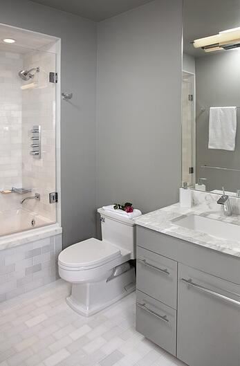 Chicago Bathroom Remodeling How To Choose The Right Toilet: chicago bathroom remodeling